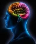 Smadzeņu tonusam